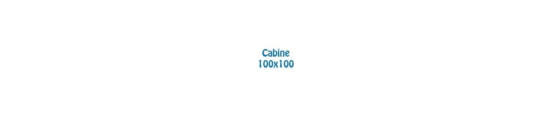 Cabine de dus 100x100